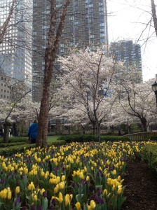 Beautiful green space at Battery Park